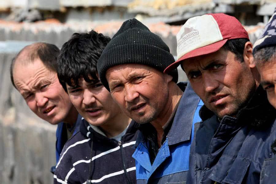 Вылечившихся мигрантов вернут в Россию